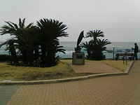 Seaworld20070331